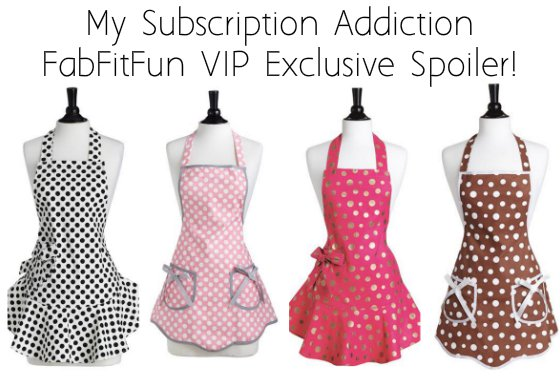 fab-fit-fun-vip-msa-spoiler